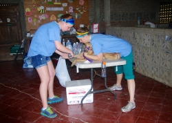 IMGP414Volunteering with World Vets: San Juan del Sur, Nicaragua
