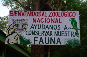 Bienvenidos al Zoological Nacional